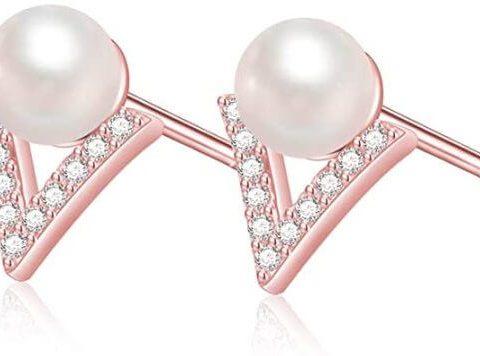 Shiny rich earrings