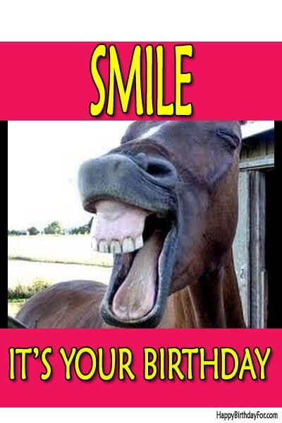 Happy Birthday Meme Donkey Image