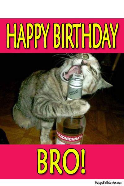 Happy Birthday Meme Funny cat
