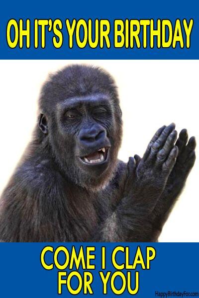 Happy Birthday Meme Gorilla
